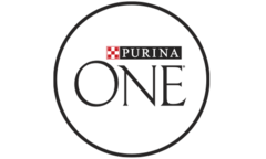 Purina ONE® Cat